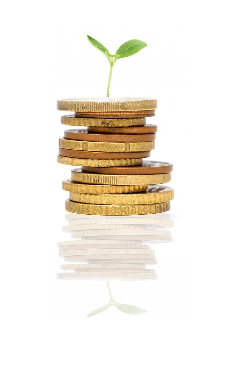 kapitalanlage-immobillie-haus-kaufen-münzen