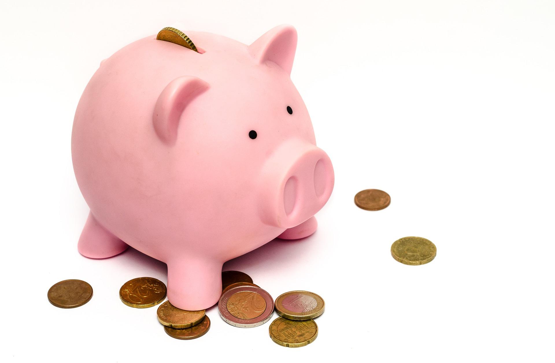 ohne-eigenkapital-haus-kaufen-schwein